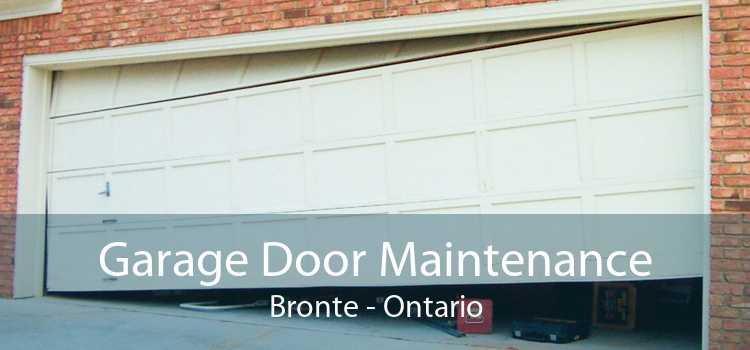 Garage Door Maintenance Bronte - Ontario