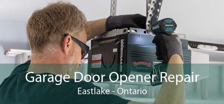Garage Door Opener Repair Eastlake - Ontario